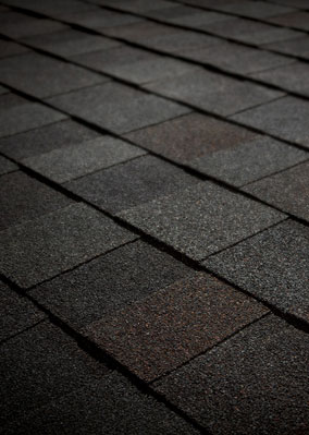 T-Roys Relief Roofing Images